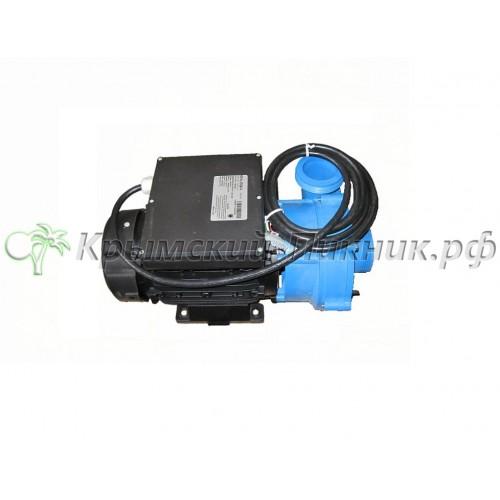Насос на 2 л/с  2HP 2-Speed 56FR 50HZ Pump